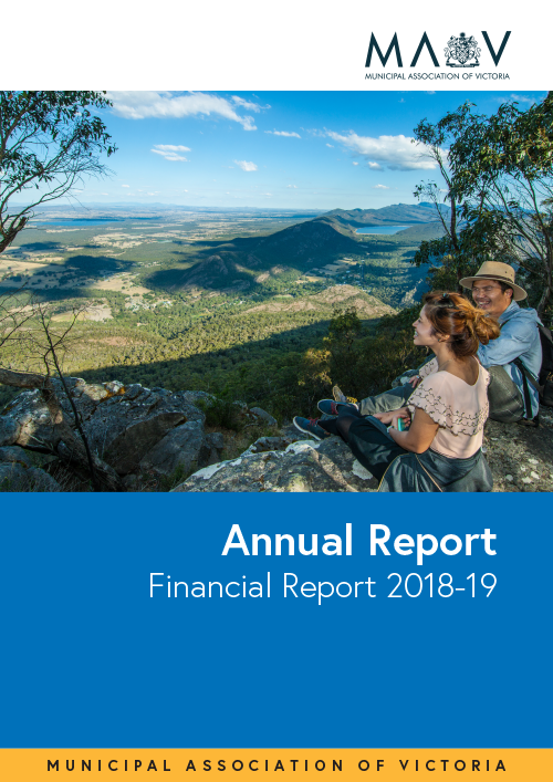 2019 MAV Annual Report Financials