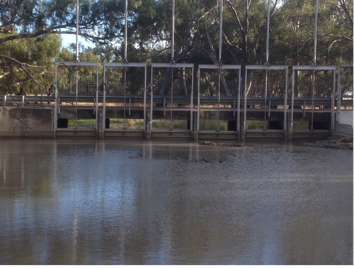 Photo of weir after the upgrade