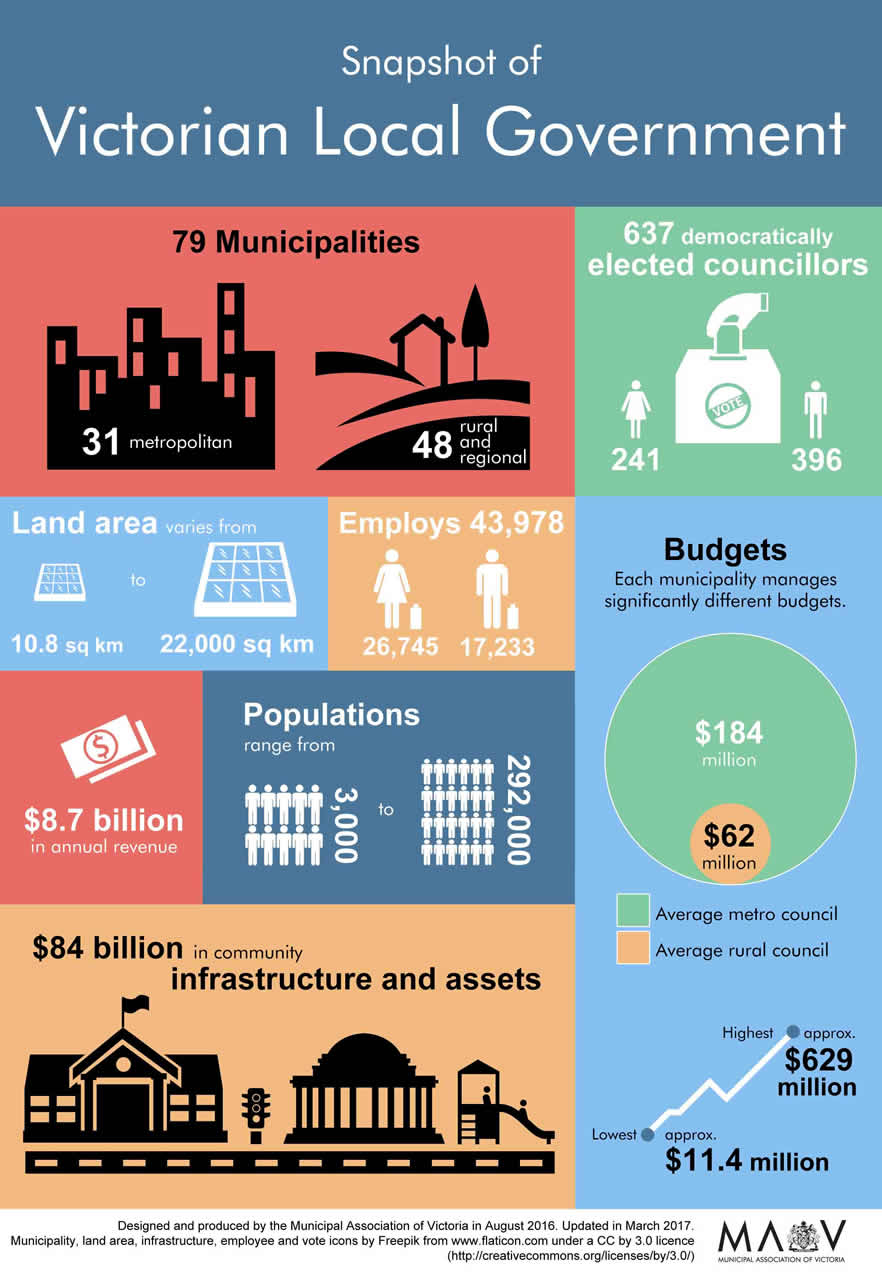 Local government facts infographic